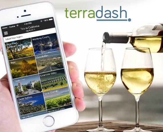 TerraDash