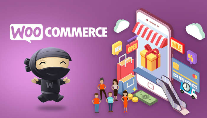 Image result for Woo commerce to serve your business
